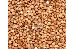 Солод Гречишный пивоваренный EBC 4-15 (Курский солод)